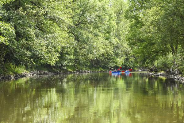 Kayak en pleine nature
