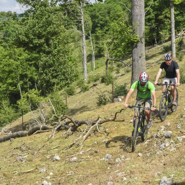 MTB in de Ardennen